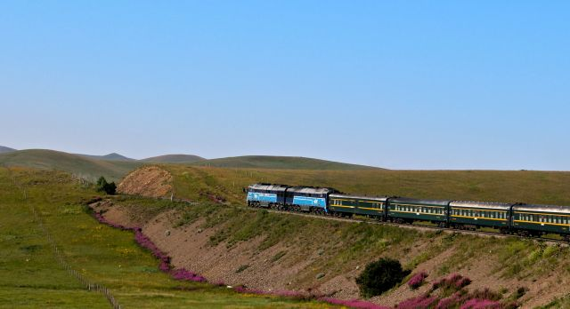 train in the steppes