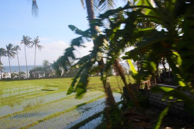 Bali West coast